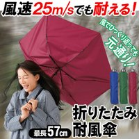 【激安セール】強風・ゲリラ豪雨に負けない!頑丈で壊れにくい耐風傘 100cm メンズ レディース 軽いカサ かさ 折りたたみ収納◎ 風速25m/s対応 長傘 ◇ 耐風傘