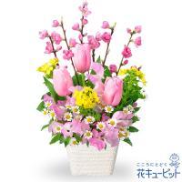 ひな祭り・ひなまつりアレンジメント 花キューピット ひなまつり お祝い 記念日 卒業 卒園 プレゼント