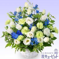 淡いブルーが哀惜の気持ちを花に表現しました。118015【花キューピット】即日配達フラワーギフト ・...