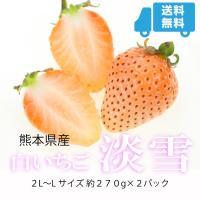 淡雪 白いちご 270g×2大粒 大きさおまかせ 贈答用 熊本県産 イチゴ 苺 ギフト 送料無料 「 岡山果物工房 」