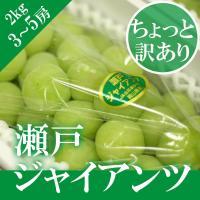 ■同梱について:発売時期の違う果物と同梱はできません。 ■品種: 瀬戸ジャイアンツ3~5房 ■商品内...