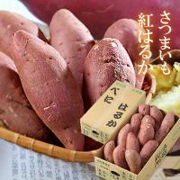 紅はるか 2kg 大きさお任せ 訳あり 熊本県 JA菊池 ギフト さつまいも 蜜芋 送料無料 「 岡山市場工房 」