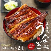 鹿児島県産ウナギ長蒲焼!大サイズ入荷。程よい脂のりとふっくらとした食感がウナギのうまさの決め手。肉厚...