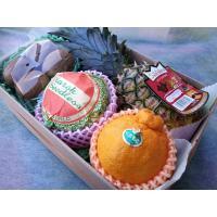 ★送料無料★贈って喜ばれる果物詰め合わせ!いづみ屋のフルーツアレンジメントで真心をお届けしませんか!...
