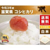 29年産 滋賀県 コシヒカリ(近江米) 30kg(5kg×6袋/白米/玄米)送料無料|igaho-ya|02