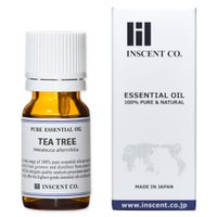 学 名:Melaleuca alternifolia 科 名:フトモモ科 原産国:オーストラリア 抽...