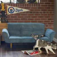 デニム素材の2人掛けリクライニングソファです。ウォッシュデニムで長年使い込んだ風合いがありヴィンテー...