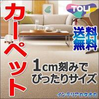 東リのカーペットです。豊富なサイズからご指定できます。サイズ内カットは無料・送料無料です。 防汚カー...