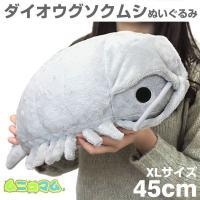■怖くない!ムニュッと可愛くなっちゃったダイオグソクムシ巨大なダンゴムシみたいな形とつぶらな瞳がチャ...