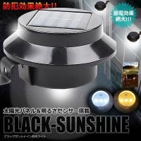 商品サイズ:120×65mm 重量:190g ソーラーパネル:多結晶60*60 2V/100MA バ...