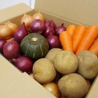 北海道でこの秋に収穫されたばかりのミニ野菜5種の詰め合わせです。産地の畑から全国各地に直送致します!...