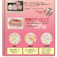 ひな祭りミニキャンディーセット|iwaiseika|05