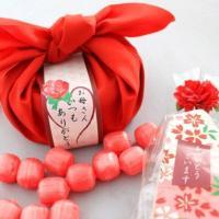 母の日ギフト 私の気持ちカーネーションキャンディーセット(送料無料)|iwaiseika