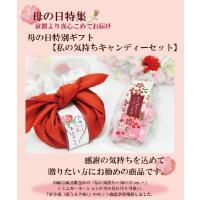 母の日ギフト 私の気持ちカーネーションキャンディーセット(送料無料)|iwaiseika|02