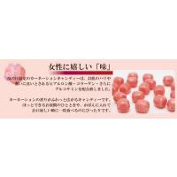 母の日ギフト 私の気持ちカーネーションキャンディーセット(送料無料)|iwaiseika|04