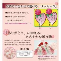 母の日ギフト 私の気持ちカーネーションキャンディーセット(送料無料)|iwaiseika|05