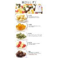 【送料無料ギフト】京飴ミックス iwaiseika 05