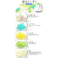 【送料無料ギフト】京飴ミックス iwaiseika 08