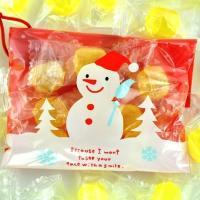 クリスマス オーナメント プチギフト お菓子 オーナメントキャンディー iwaiseika 04