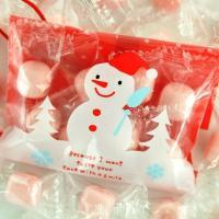 クリスマス オーナメント プチギフト お菓子 オーナメントキャンディー iwaiseika 06