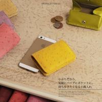 オーストリッチ ボックス型 小銭入れ 財布 カラー ブルー  [ゆうパケットで送料無料]