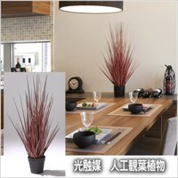 人工観葉植物 光触媒加工観葉植物 造花 レッドグラスSS