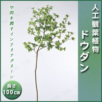 取寄品  人工観葉植物 ドウダン 100cm フェイクグリーン インテリアグリーン