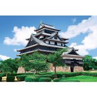 商品名:EPO-71-096 風景 松江城-島根 300ピース サイズ:26×38cm 品 番:EP...