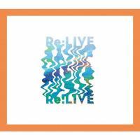 [期間限定][限定盤]Re:LIVE(期間限定盤B・20/47 ツアーライブ盤)【CD+2DVD】/関ジャニ∞[CD+DVD]【返品種別A】