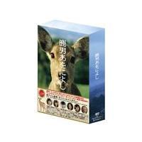 鹿男あをによし DVD-BOX ディレクターズカット完全版/玉木宏[DVD]【返品種別A】