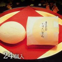 九州 ギフト 2020 薩摩蒸気屋 かすたどん 24個入 鹿児島 お土産 お菓子 和菓子 常温