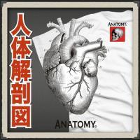 おもしろTシャツ メンズ 面白 パロディ ジョーク 人体解剖  デザイン 人体解剖デザイン 心臓 柄...