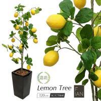 人工観葉植物 フェイクグリーン 大型 FIAN レモンツリー レモンの木 120cm 鉢植 観葉植物 造花 光触媒 CT触媒