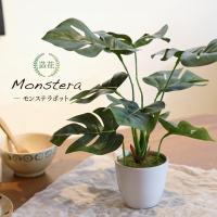 ミニ フェイクグリーン モンステラ 父の日 人工観葉植物 造花 CT触媒