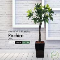 パキラ 130cm 鉢植 人工観葉植物 造花 光触媒 大型 フェイク グリーン リアル CT触媒 父の日