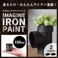 商品の詳細  容量 100ml   塗布面積(1回塗り) 1〜1.2平米   用途 屋内木部、金属、...
