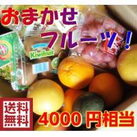 おまかせフルーツ。オレンジ・バナナ・キウイフルーツ・ ブドウ・アボカド・レモン・パイン・グレープフル...