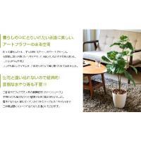 観葉植物 光触媒 造花 ウンベラータ グリーン タバコ ペット