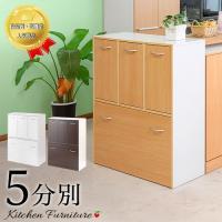■商品番号 ANS1006528  キッチン ごみ箱 スリム ダストボックス 5分別  【送料無料】...