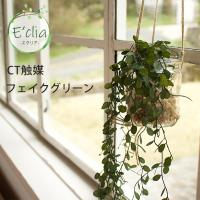 フェイクグリーン 吊り下げタイプ 消臭 抗菌 おしゃれ 観葉植物 植物 緑 グリーン インテリア ECLIA エクリア
