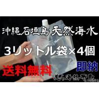 「3リットル袋×4袋セット」沖縄石垣島の天然海水(送料無料)【美ら海熱帯魚】|kaisui-okinawa