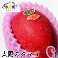 送料無料6,980円 宮崎県産 完熟マンゴー太陽のタマゴ 3L1玉(400g〜)