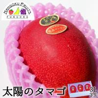 送料無料19,800円 宮崎県産 完熟マンゴー太陽のたまご3L3玉 (400g〜)