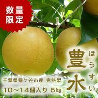 千葉県 鎌ケ谷 梨 かまたんのふるさと梨 完熟梨・豊水 5kg(10~14個)