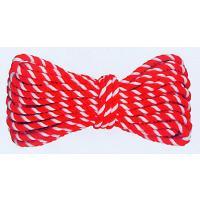 太さ8ミリの紅白紐(10.5m)です。紅白幕を張ったり、除幕式で覆いの幕を引くのに使われるほか、祭礼...
