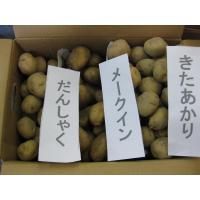 送料無料のチャンス 食べ比べセット4 北海道産メークイン約3kg 北海道産きたあかり約3kg だんし...