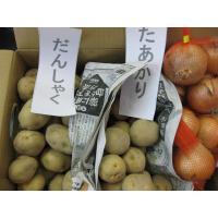 送料無料のチャンス 食べ比べセット5 北海道産玉ねぎMサイズ約3kg 北海道産きたあかり約3kg だ...