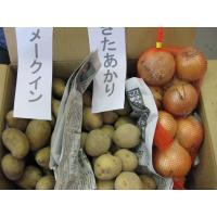 送料無料のチャンス 食べ比べセット6 北海道産玉ねぎMサイズ約3kg 北海道産きたあかり約3kg メ...