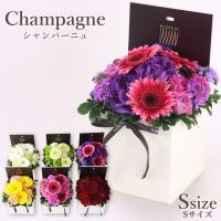 花 ギフト お見舞い フロレアル シャンパーニュ S 6色選択 生花 長持ちする上質な お花 優良配送 送料無料 誕生日 ガーベラ バラ プレゼント フラワーボックス