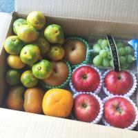 通年、ご注文時期、出荷時の旬の果物を、たっぷり5kg詰め合わせて、お届け致します。種類は、当方のおま...